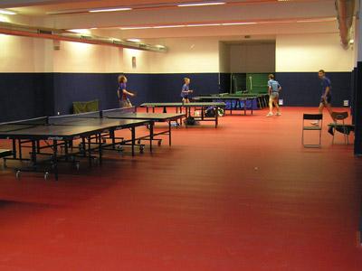 Mezinárodní gay a lesbický ping-pongový turnaj se bude konat v profesionální hale stolního tenisu Juliska na Praze 6
